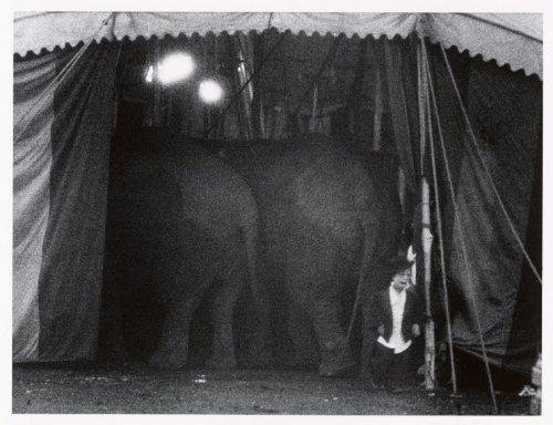 1958 USA. Cirque. USA. Palisades, New Jersey. 1958. The Dwarf. Image send to Greg Kucera (Transaction : 632060012511250000) © Bruce Davidson / Magnum Photos